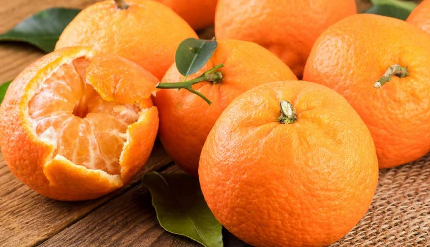 Confira os benefícios da mexerica (tangerina) para a boa forma e saúde