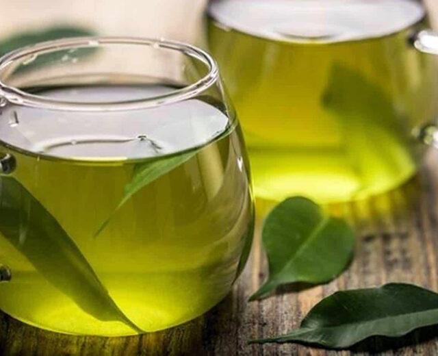 5 Mitos e Verdades sobre o Chá de Folha de Abacate
